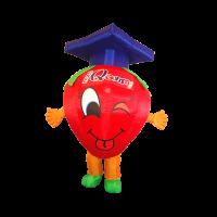 custom mascot malaysia biofact strawberry hola mascot 13