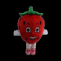 custom made mascot smart reader strawberry hola mascot 1