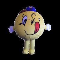 mascot costume winwin boy hola mascot 1