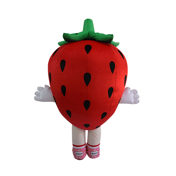 custom made mascot smart reader strawberry hola mascot 3