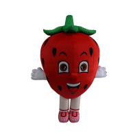 custom made mascot smart reader strawberry hola mascot 1